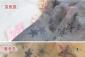 李小璐假纹身丝袜 大星星假纹身丝袜 出口日本假纹身丝袜